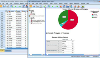 SPSS Statistik